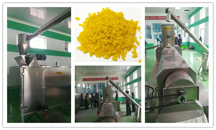 Finish Installation Of Artificial Rice Processing Line In Korea