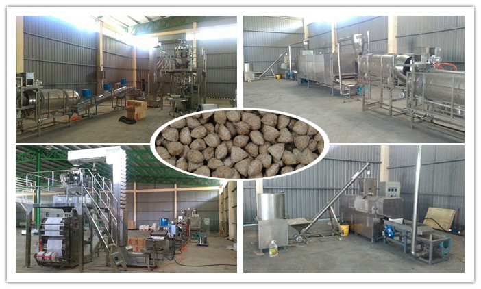 Cat Food Processing Line Is Finished in Malaysia