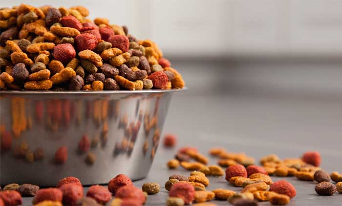 New Trends of Pet Food Market in Year 2019
