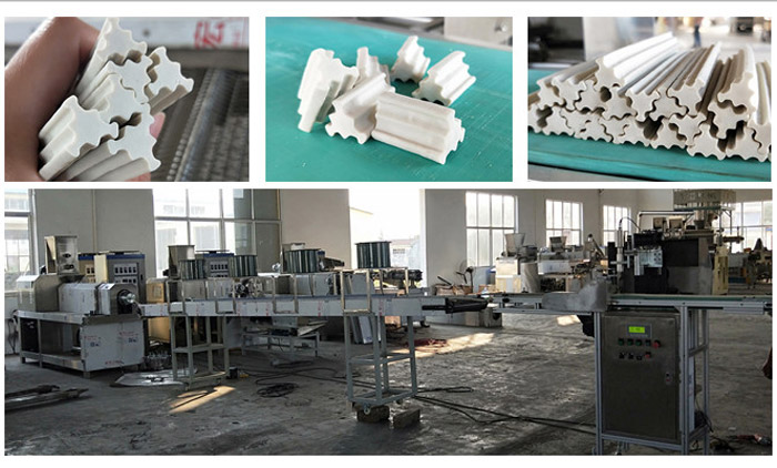 Successful Test of Pet Treats Extrusion Line is Made