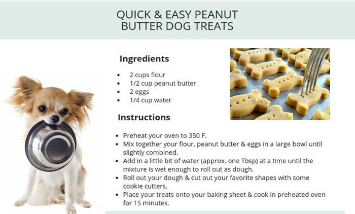Best Dog Biscuits are Made by Pet Biscuits Production Line